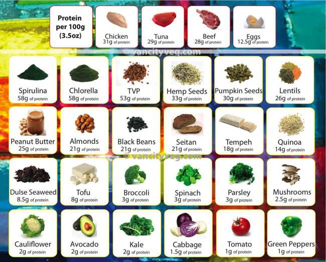 The 4 Best Vegan Foods To Eat If Youre Trying To Tone Up The 4 Best Vegan Foods To Eat If Youre Trying To Tone Up new foto