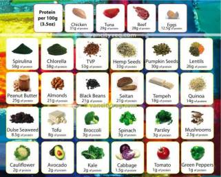 protein-chart-meat-veg-etc